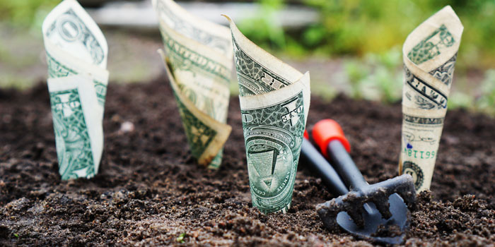 IRS Increased Contribution Limits